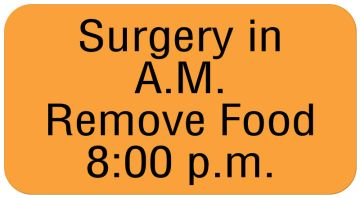 """SURGERY IN A.M. REMOVE FOOD 8:, Communication Label, 1-5/8"""" x 7/8"""""""