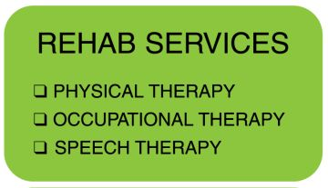 "Rehab Services, 1-5/8"" x 7/8"""